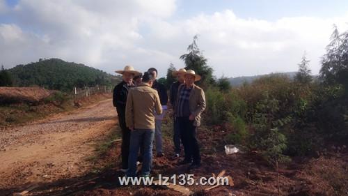 一三五队专家组到曲靖南绕城段项目检查指导工作